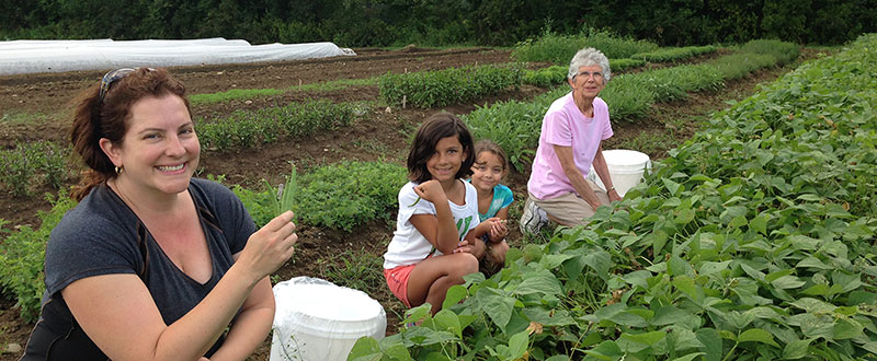 Volunteers gleaning in the community